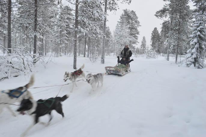 laponia-rovaniemi-finlandia-42
