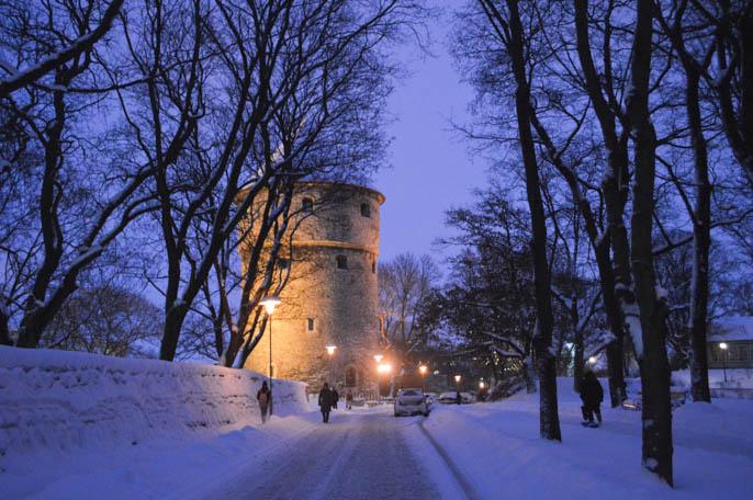 tallin-estonia-57